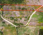 Terrain Rustique - 19.660m2 / A-dos-Ruivos