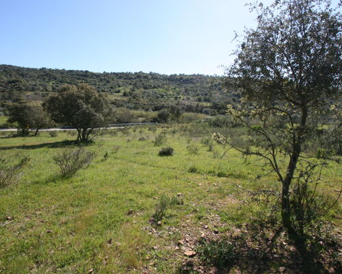 2661 m2 rustic land, flat and with electricity on the grounds