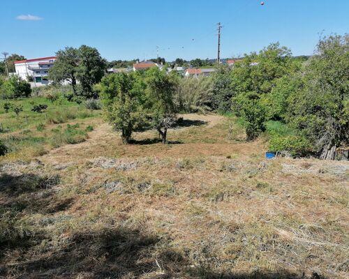 Lote de terreno para construção, Gândara, Leiria