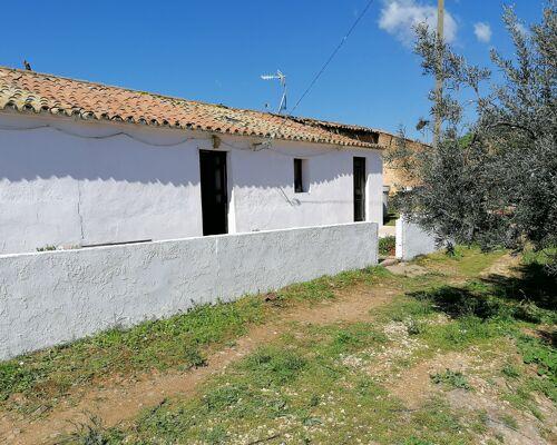 Farmhouse with 3.2. hectare close to São Marcos da Serra, Algarve