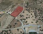 Terreno com viabilidade de construção , Alentejo, Reguengos de Monsaraz