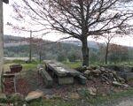 Quinta de 6.5 hectares com casinha em pedra em Castelo de Penalva